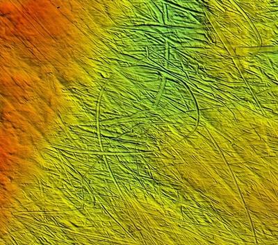 5f7e8a145d77 A világ minden tájáról származó több mint 250 tengergeológus és glaciológus  töltötte az elmúlt négy évet a tenger alatti glaciális tájformák atlaszának  ...